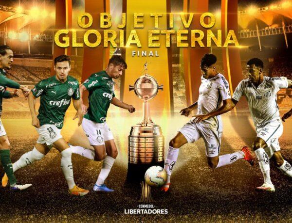Final Libertadores Palmeiras e Santos Lances e Melhores Momentos